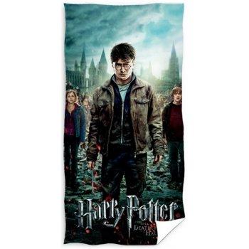 Bavlněná plážová osuška Harry Potter