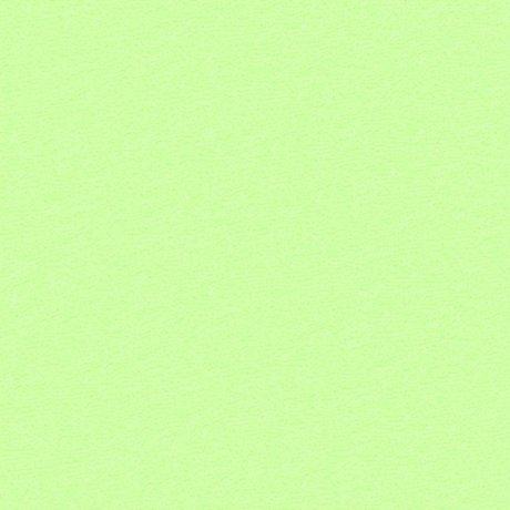 Froté prostěradlo - 90 x 200 cm - světle zelené