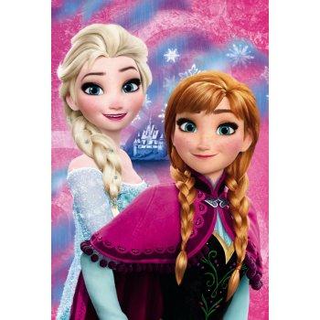 Fleecová deka Ledové království - Frozen