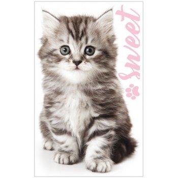 Ručník na ruce / na obličej Sladké koťátko