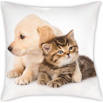 Polštář Štěně a kotě