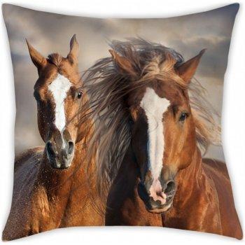 Polštář Koně
