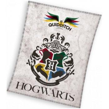 Fleecová deka Harry Potter - Famfrpál
