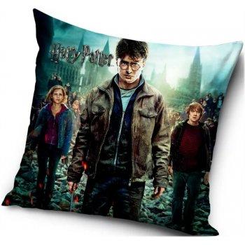 Polštář Harry Potter, Hermiona a Ron