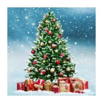 Vánoční motiv